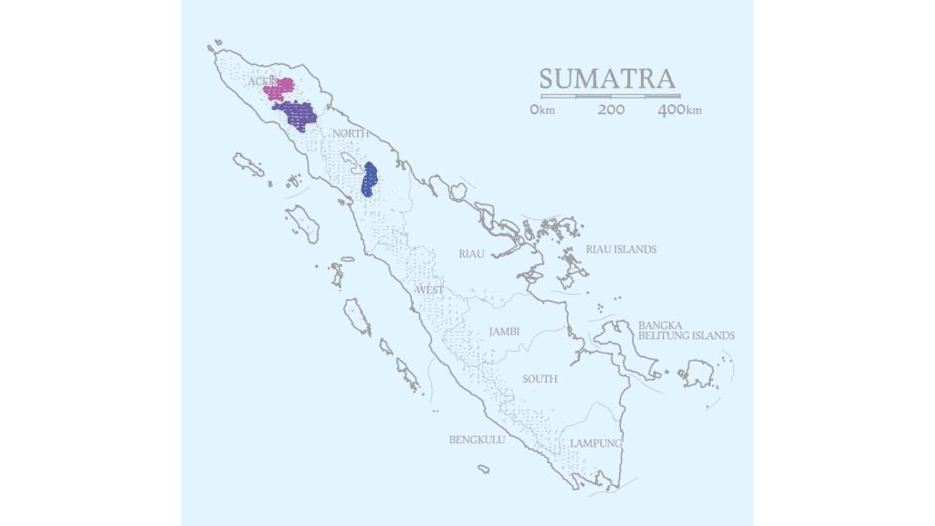 Sumatra coffee regions